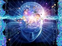 What is bioelectromagnetism?